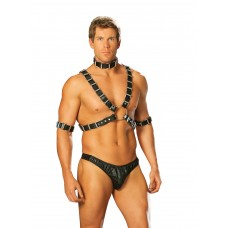 4 piece adjustable harness. Set includes leather harness, arm bands and collar.  - L9663